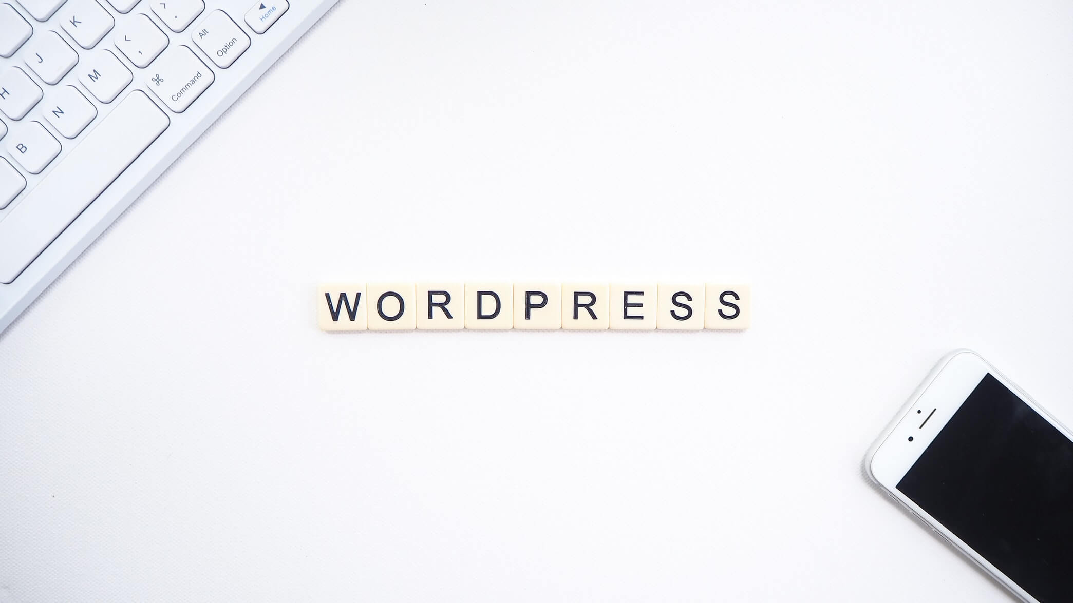 Why Your Next Web Project Depends On WordPress