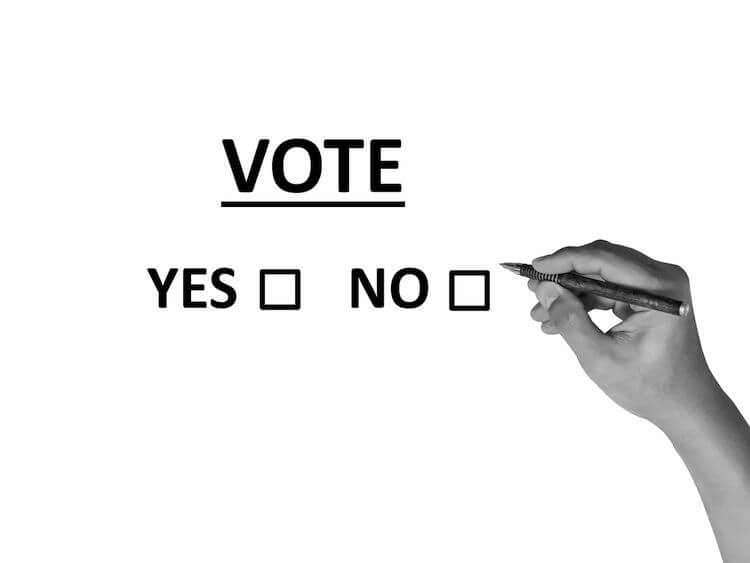 yes no poll for voting