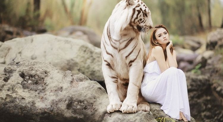 girl with white tiger