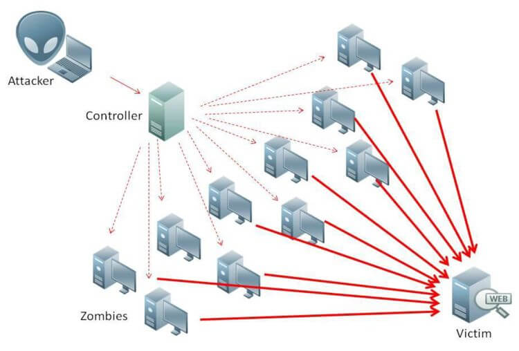Why DDoS Protection is Critical