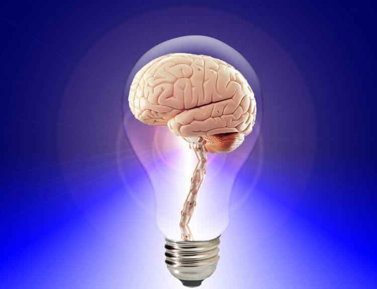 Sell Your Brain Online for Extra Cash