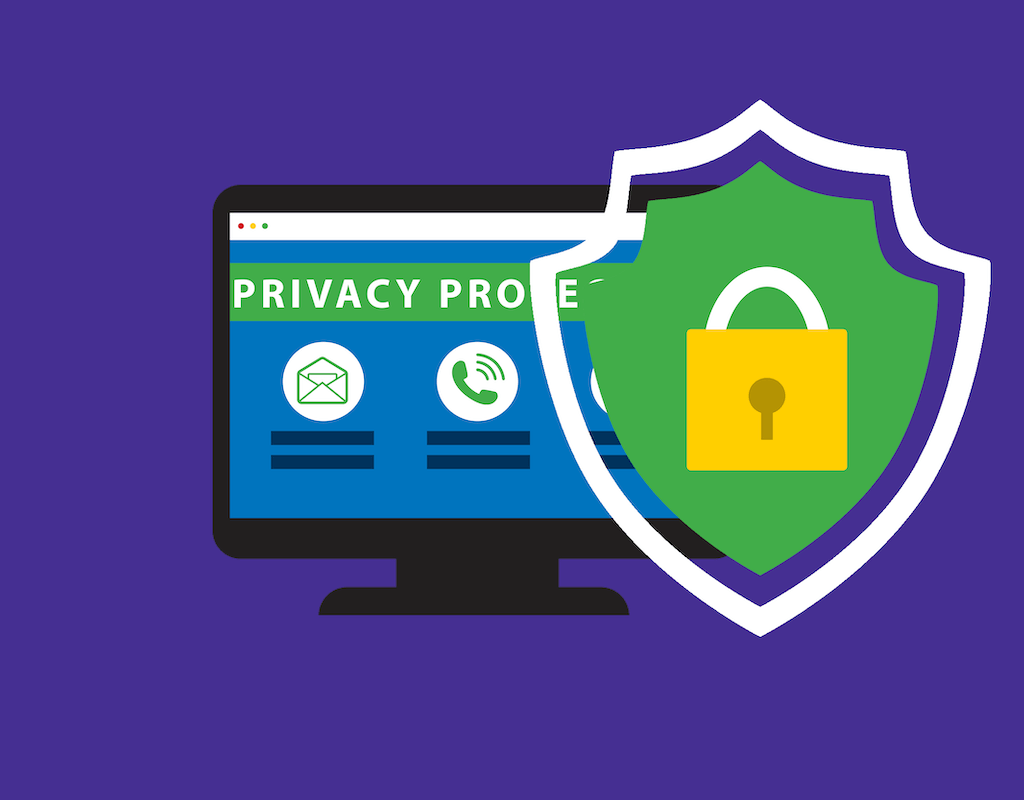 The Importance of Domain Privacy Protection
